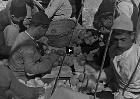 Travail à Jaffa avant 1948